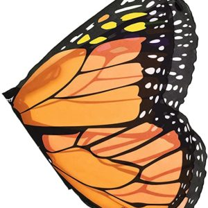 Wings - Monarch Butterfly